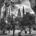 Patio de los naranjos. Mezquita
